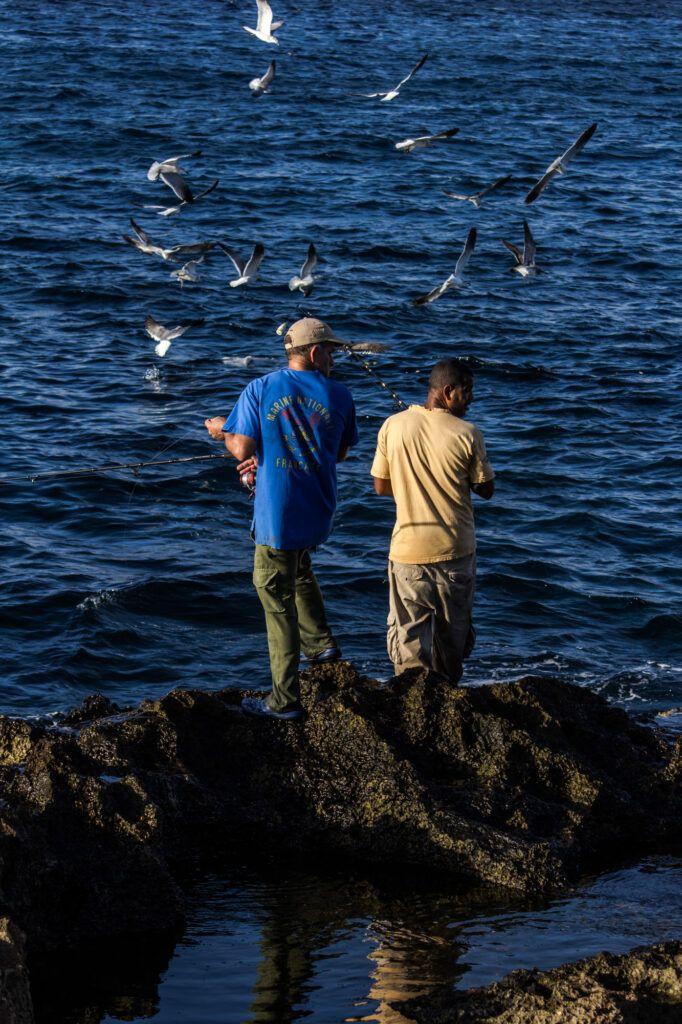 Pescadores Malecón y Gaviotas-La Havana, Cuba-2014
