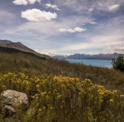 South Island – Nueva Zelanda