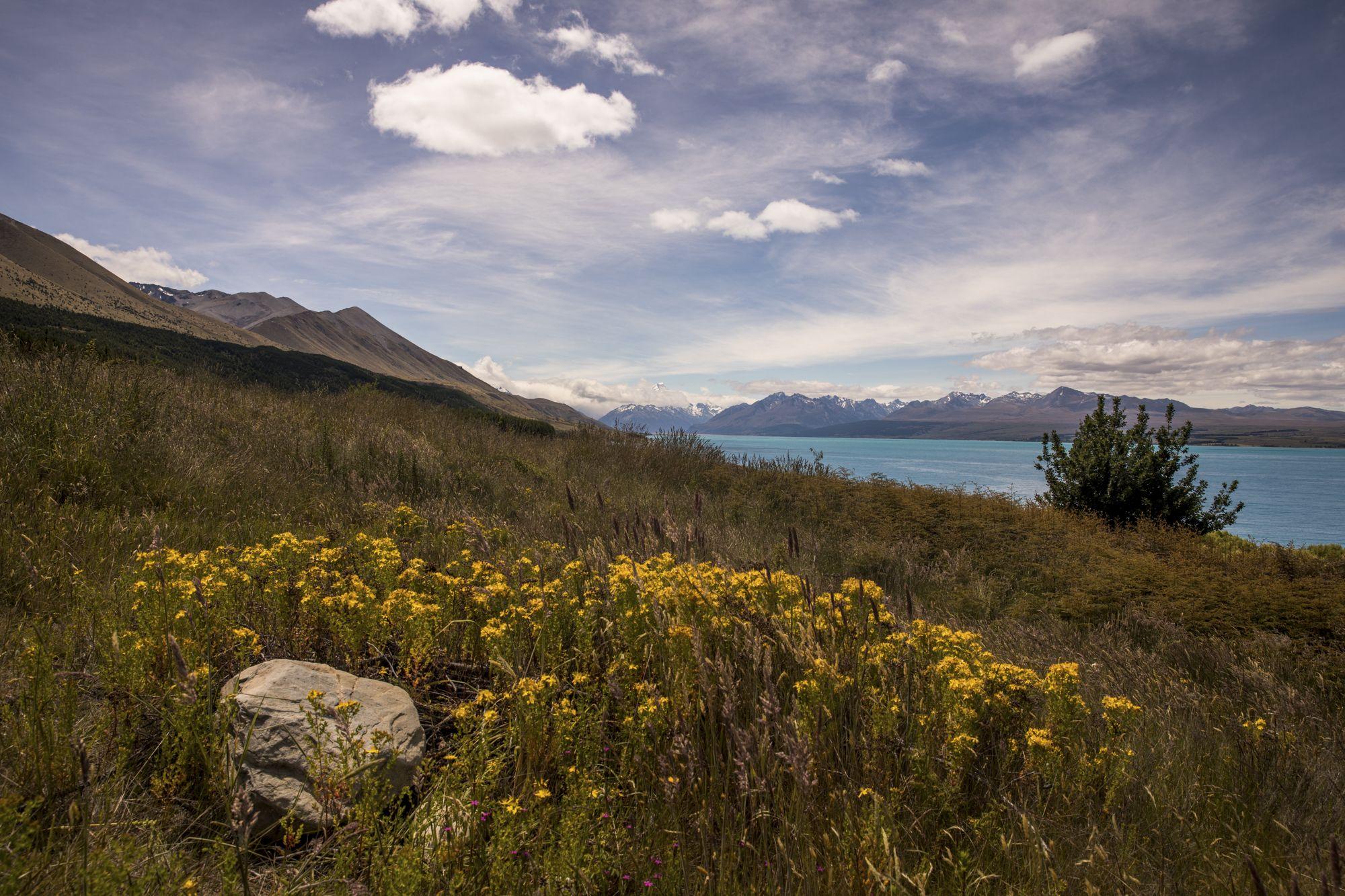 South Island – Nueva Zelanda